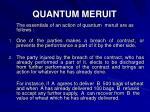 quantum meruit2