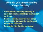what do you understand by cargo security