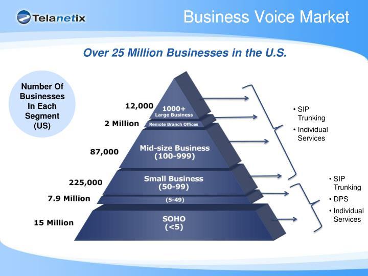 Business Voice Market