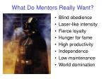 what do mentors really want