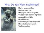 what do you want in a mentor