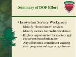 summary of dof effort
