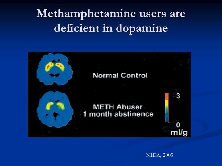 Methamphetamine users are deficient in dopamine