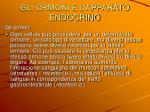 gli ormoni e l apparato endocrino3