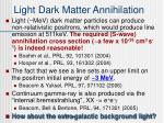 light dark matter annihilation