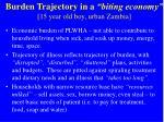 burden trajectory in a biting economy 15 year old boy urban zambia