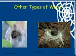 other types of webs