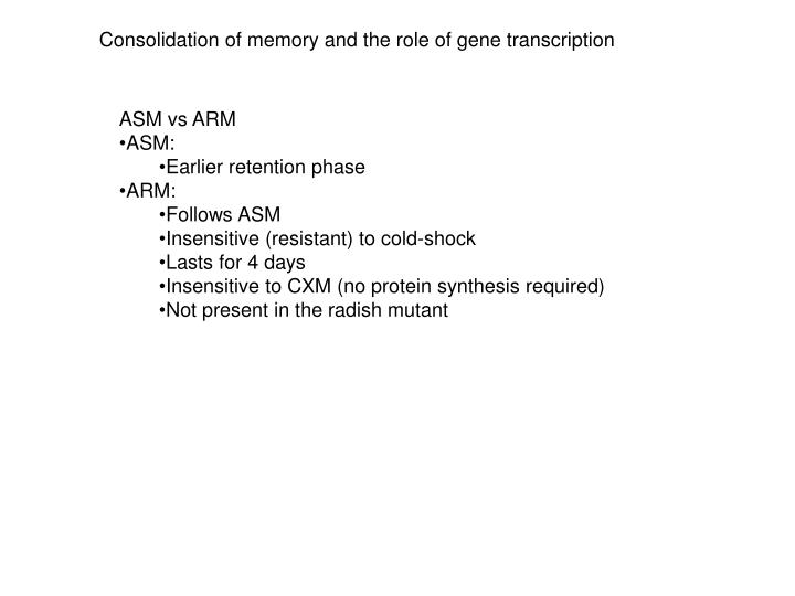 Consolidation of memory and the role of gene transcription