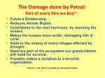 the damage done by petrol part of every litre we buy