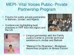 mepi vital voices public private partnership program
