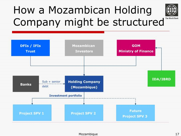 How a Mozambican Holding Company might be structured