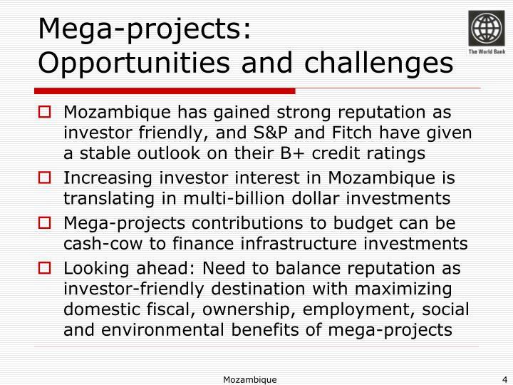 Mega-projects: