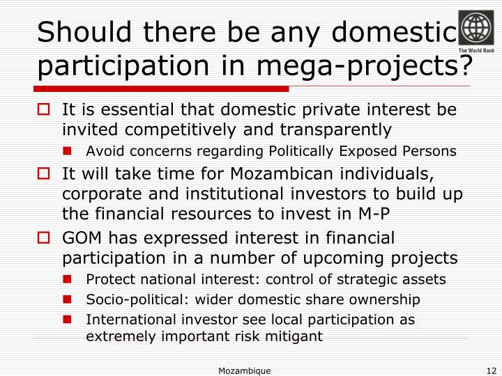 Should there be any domestic participation in mega-projects?