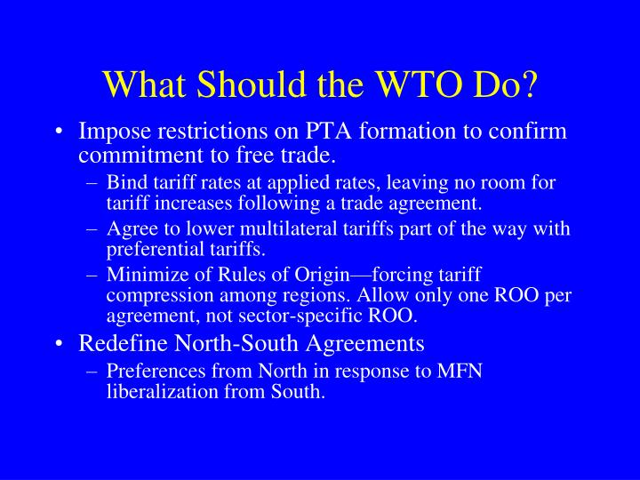 What Should the WTO Do?