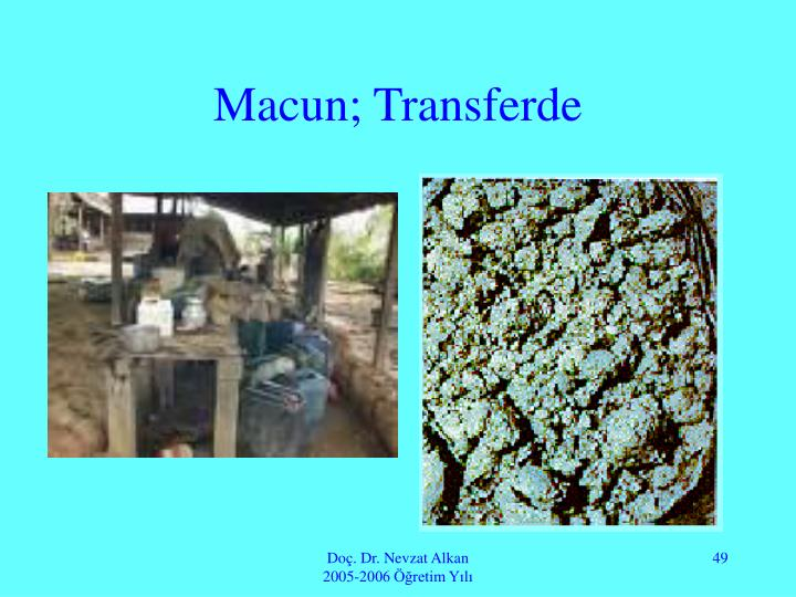 Macun; Transferde