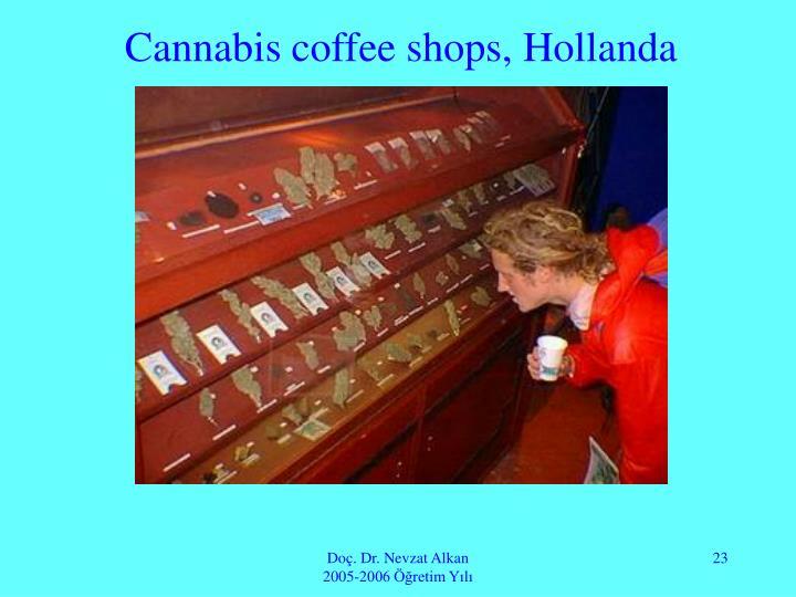 Cannabis coffee shops, Hollanda