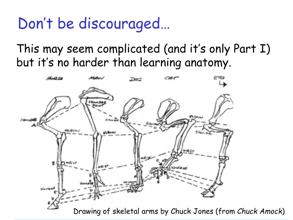 Don't be discouraged…