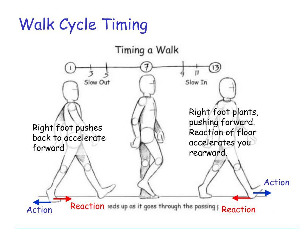 Walk Cycle Timing