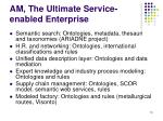 am the ultimate service enabled enterprise