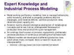 expert knowledge and industrial process modeling