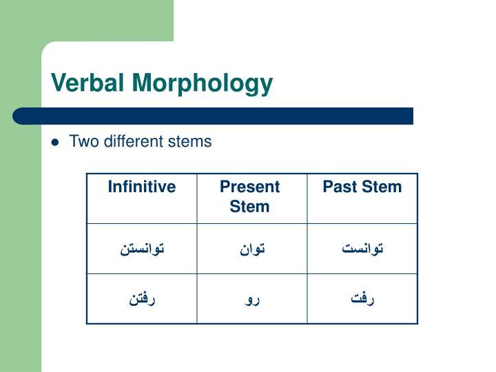 Verbal Morphology