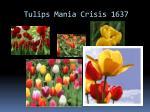 tulips mania crisis 1637