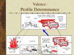 valence profile determinance1