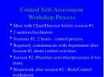 control self assessment workshop process
