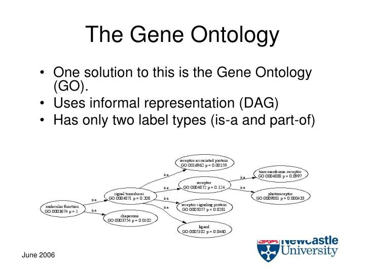 The Gene Ontology