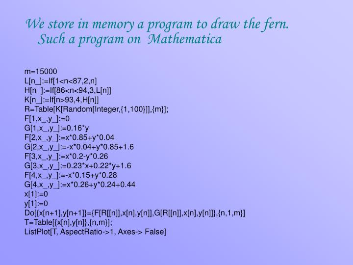 We store in memory a program to draw the fern. Such a program on  Mathematica