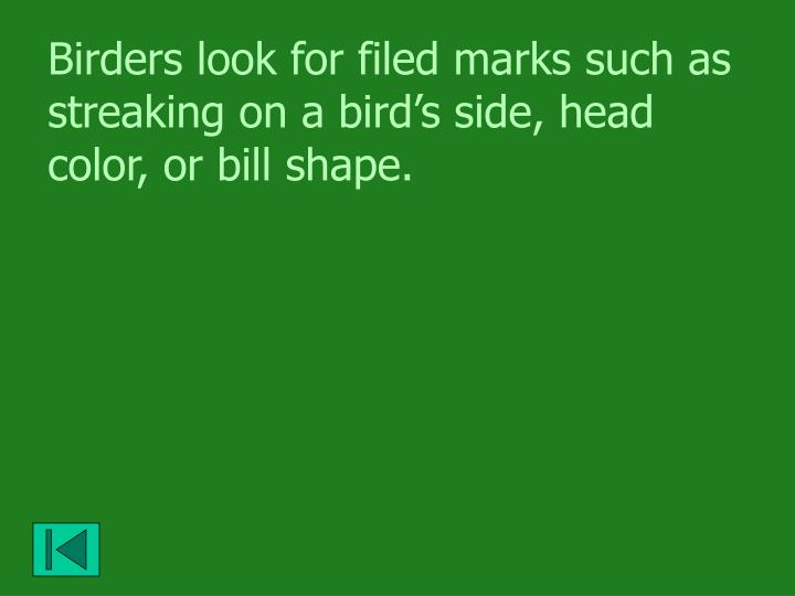 Birders look for filed marks such as streaking on a bird's side, head color, or bill shape.