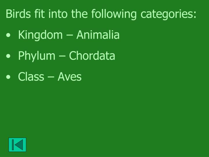 Birds fit into the following categories: