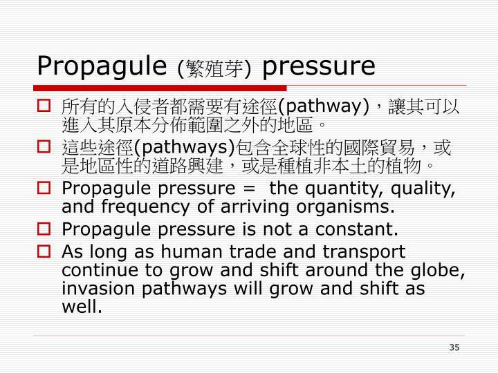 Propagule