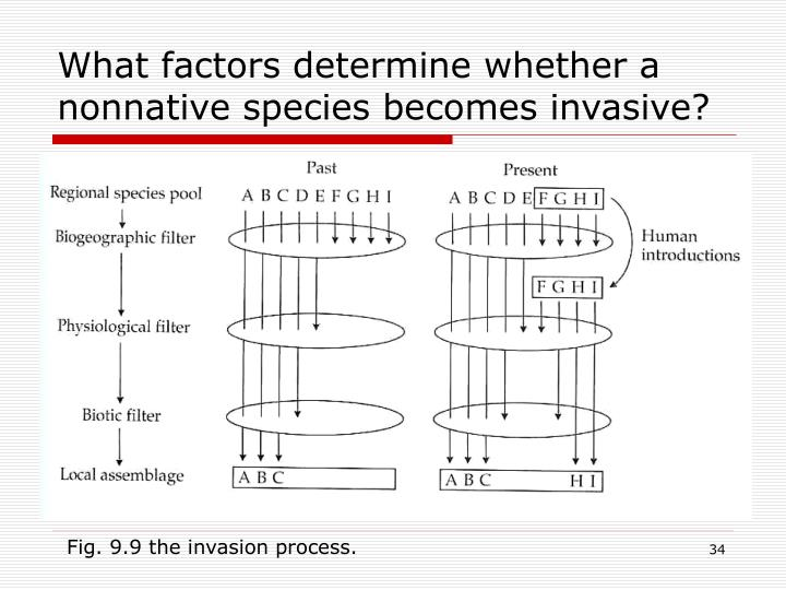 What factors determine whether a nonnative species becomes invasive?
