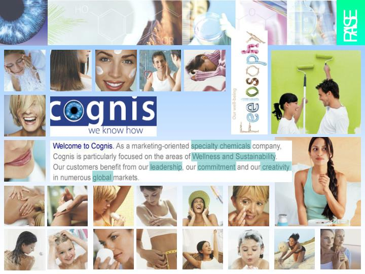 Cognis 7c business strategy