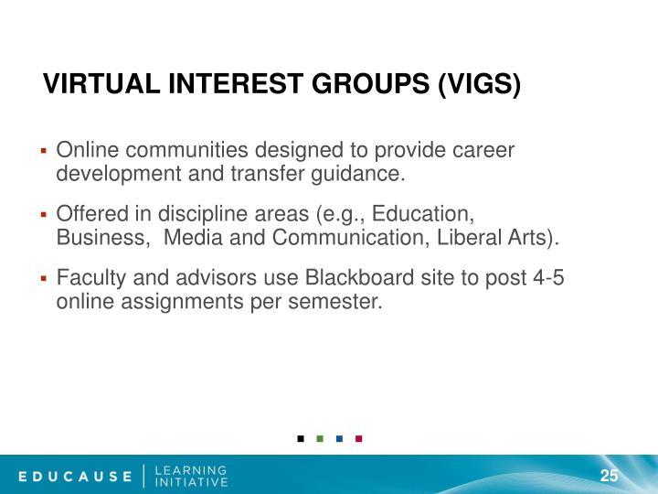 Virtual Interest Groups (VIGs)