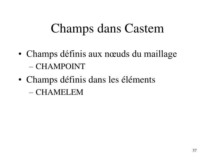 Champs dans Castem