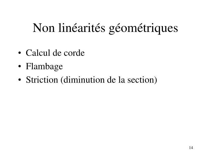 Non linéarités géométriques