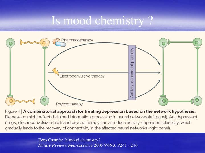 Is mood chemistry ?