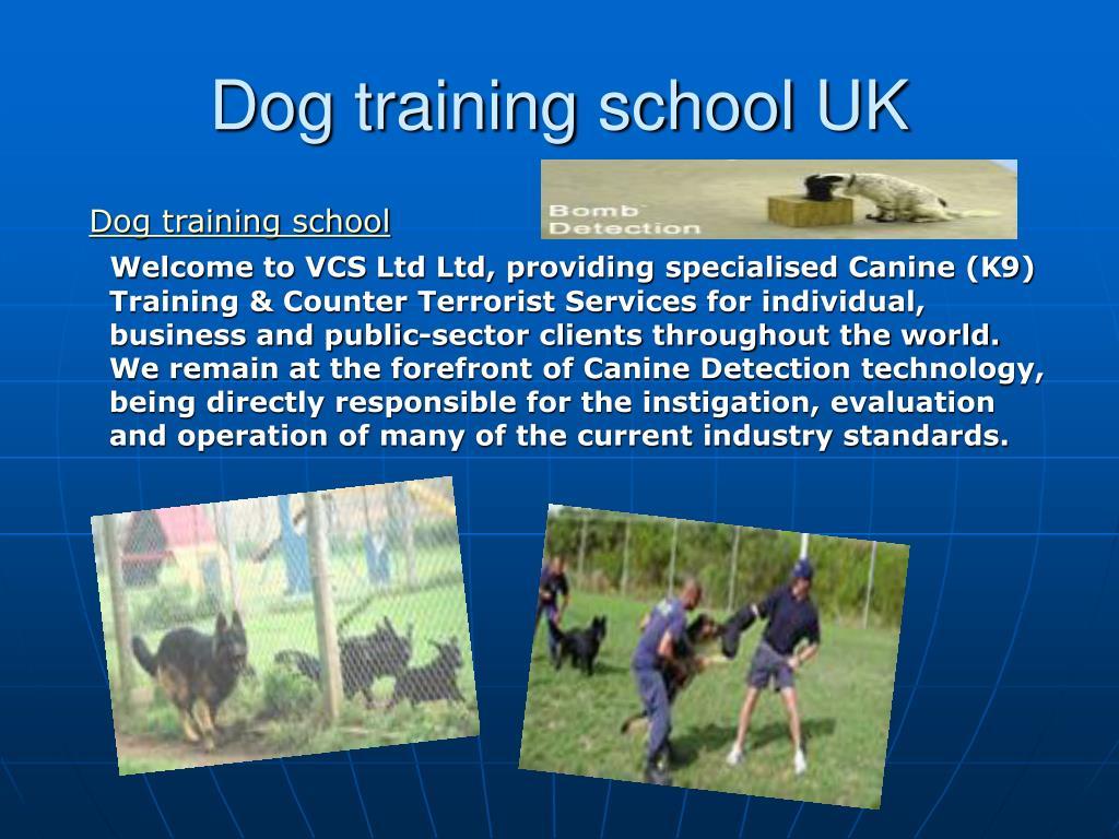 dog training school uk l.
