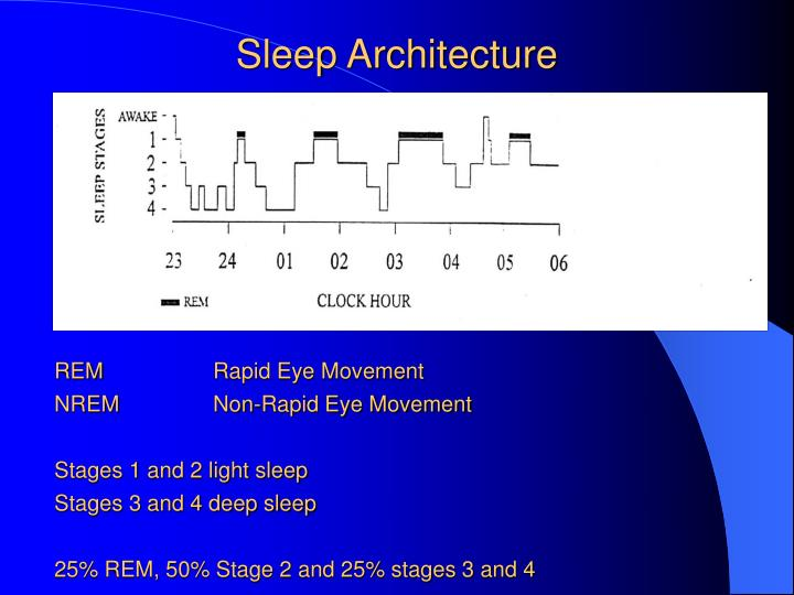 a summary and analysis of rapid eye movement rem -selective rem-sleep deprivation has a similar effect to antidepressants such as prozac on depression a lasting positive effect that takes a few weeks to develop and also, it seems that all medications that have an antidepressant effect causes some degree of selective rem sleep deprivation.