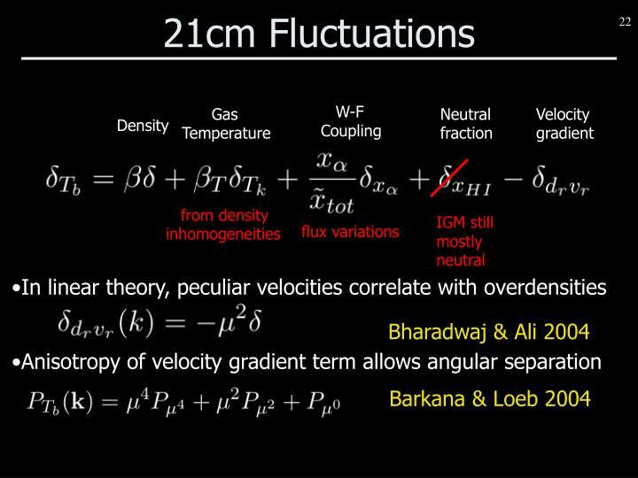 21cm Fluctuations
