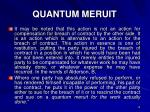 quantum meruit1