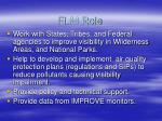 flm role1