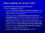 what could the eu do for cam