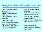examples of wildcard searches with like