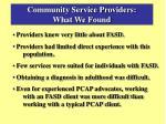 community service providers what we found