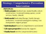 strategy comprehensive prevention intervention1