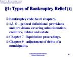 1 types of bankruptcy relief 1