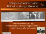 examples of vision based behaviors image mosaics